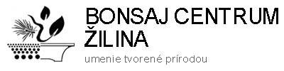 Bonsaj Žilina