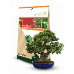 Mykorhiza Ectovit