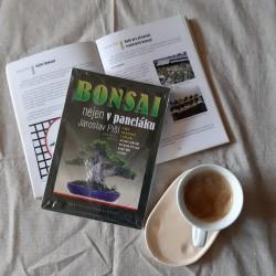 Bonsaj nejen v paneláku