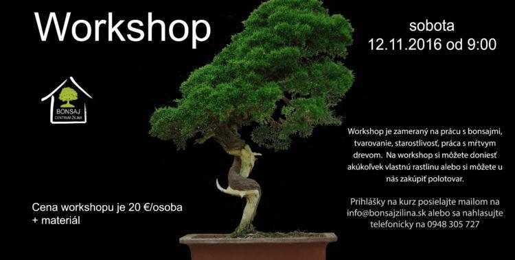 Jesenný workshop